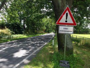 Hinweisschild an einer vom Eichenprozessionsspinner (EPS) betroffene Straße.