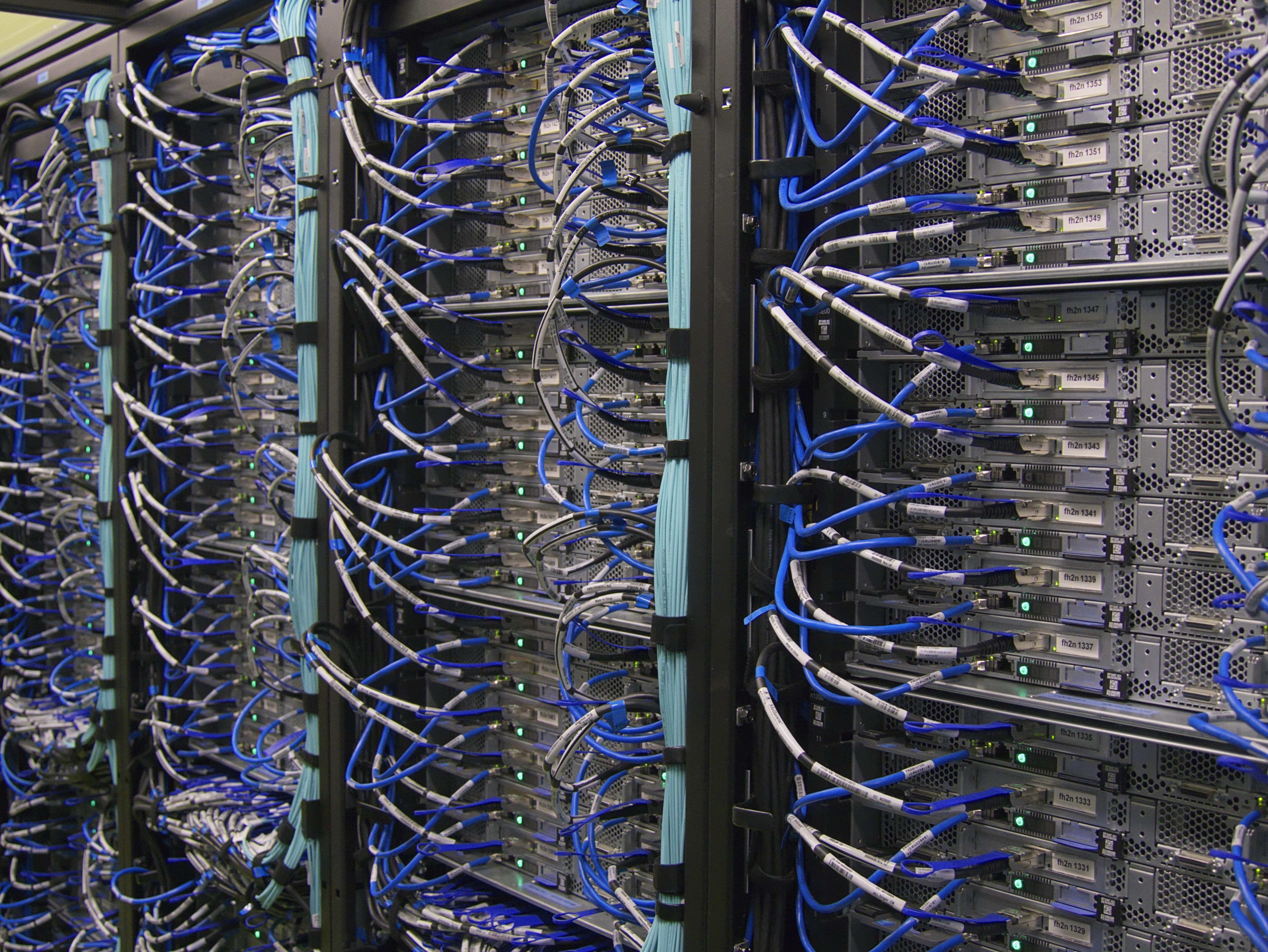 Eine Maus kann einen schwerwiegenden IT-Schaden verursachen. - Leeser & Will Schädlingsbekämpfung München betreut durch ready4marketing.de